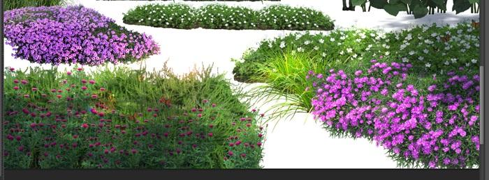 各類植物花卉園林景觀后期制作素材psd(3)