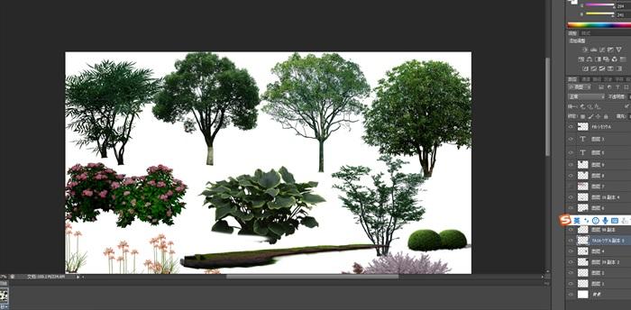 園林景觀中植物后期制作素材psd(2)