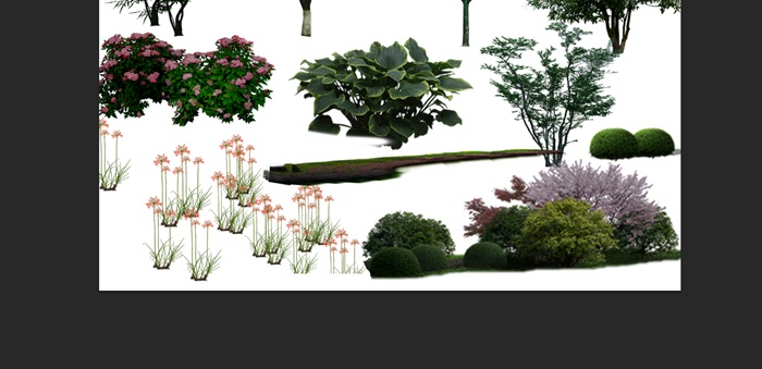 園林景觀中植物后期制作素材psd(3)