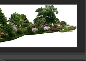 大量树木花树植物花卉草类植物素材psd