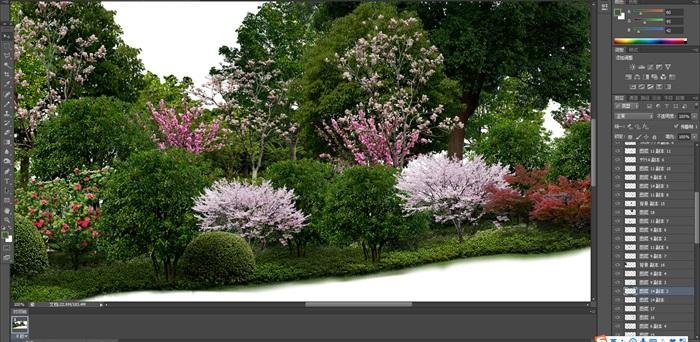 大量树木花树植物花卉草类植物素材psd(3)