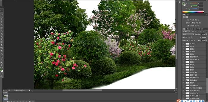 大量树木花树植物花卉草类植物素材psd(5)