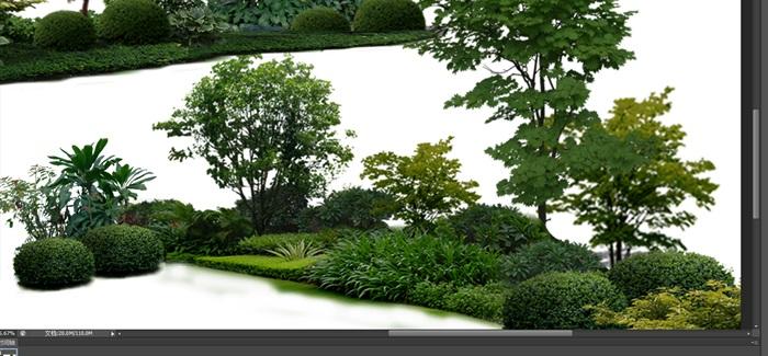 植物花卉組景后期制作素材psd(2)