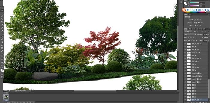 植物花卉組景后期制作素材psd(4)