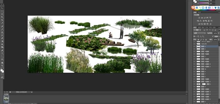各類水邊植物花卉后期制作素材psd(1)