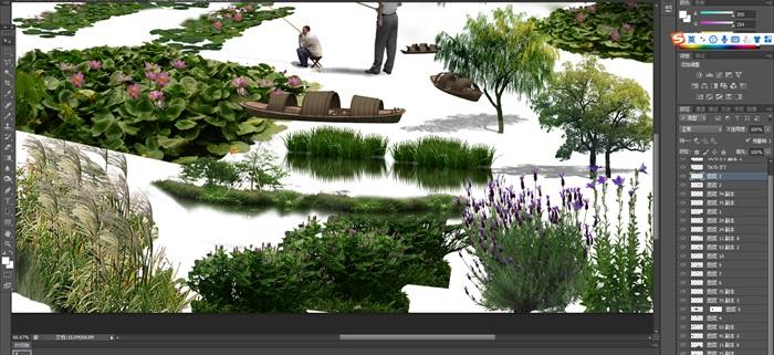 各類水邊植物花卉后期制作素材psd(4)