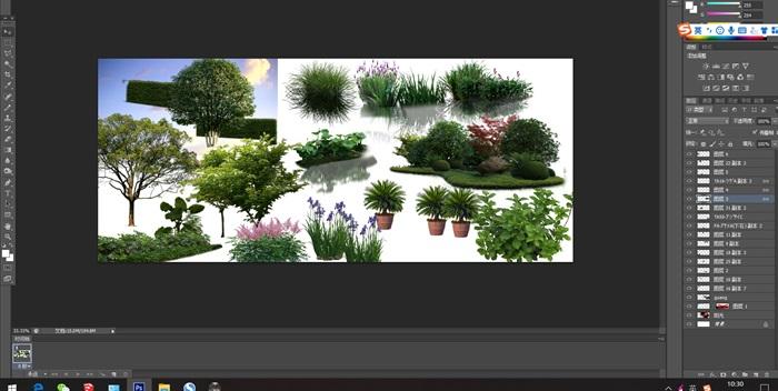 植物花卉園林景觀后期制作素材psd(1)