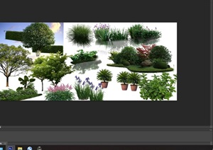 植物花卉园林景观后期制作素材psd