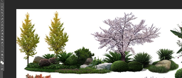 園林景觀中植物后期制作素材psd4(2)