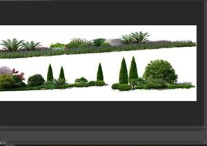 花卉植物组景造景后期制作素材psd