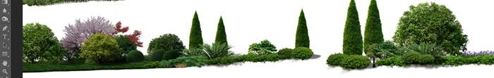 花卉植物組景造景后期制作素材psd(3)