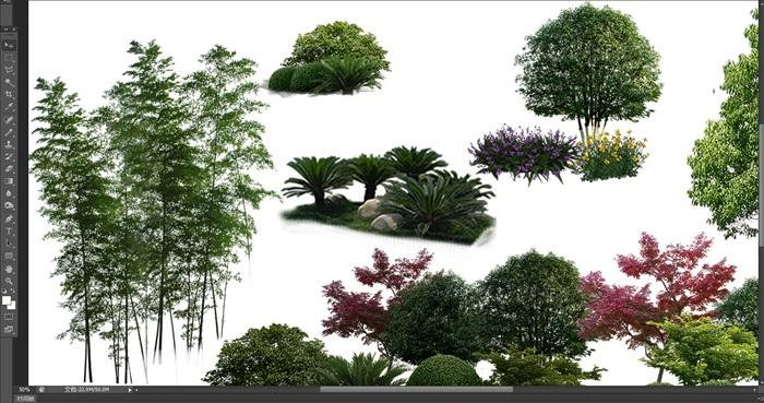 園林景觀中植物后期制作素材psd3(3)
