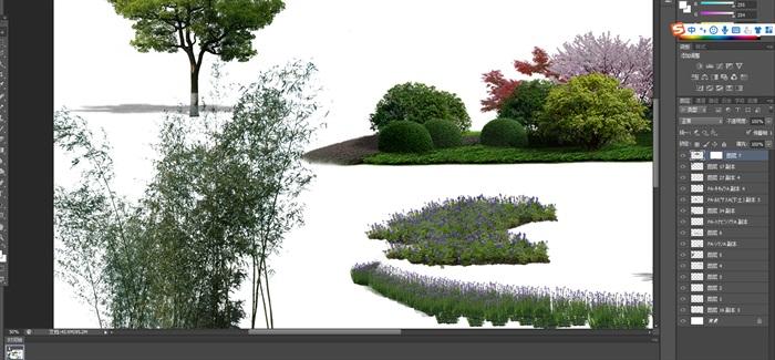 園林景觀中植物後期制作素材psd2(2)