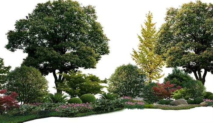 植物花卉景觀組景園林后期制作素材psd(3)