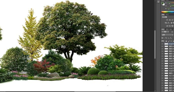 植物花卉景觀組景園林后期制作素材psd(4)