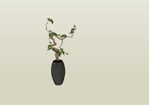 造型杜鹃树陶罐摆件SU(草图大师)素材模型