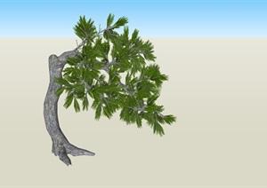 造型树歪脖子造型SU(草图大师)素材模型