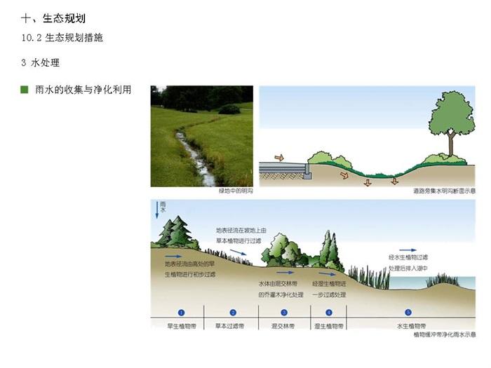 [多义景观]青岛世园会多义概念规划汇报(15)