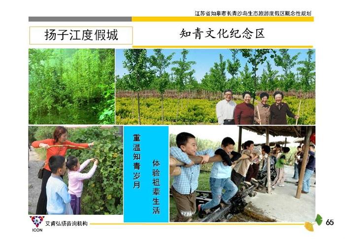 江蘇如皋長青沙島生態旅游度假區概念性規劃(14)