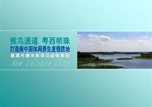 湛江休闲养生度假胜地项目策划
