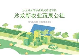 2016.08 沙龙村休闲农业田园综合体规划项目(79页)