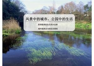 某市杨柳湖水环境综合治理项目概念性规划设计方案
