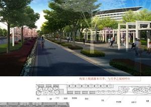 南阳新区道路(白河路机场南二路北二路)景观绿化设计方案高清文本