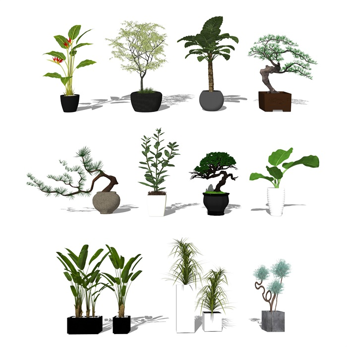 现代盆栽植物 景观小品su模型(3)