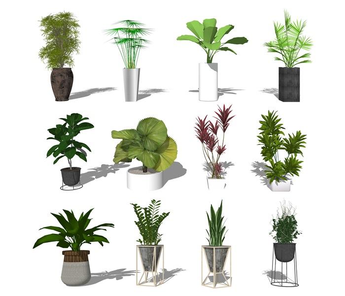 现代盆栽植物绿植陶罐su模型(1)