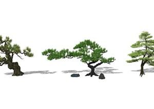 新中式景观树 景观小品 树SU(草图大师)模型