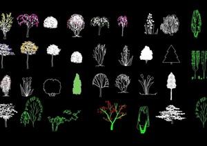 树木植物设计cad立面图例