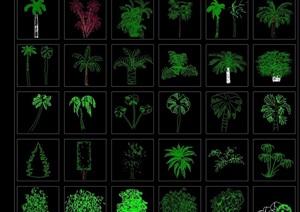 植物立面cad图例