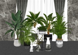 现代绿植盆景盆栽组合 绿植 盆景 盆栽 植物SU(草图大师)模型