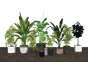 现代绿植盆栽 植物组合SU(草图大师)模型