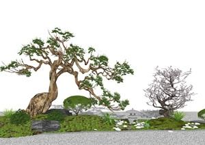 新中式庭院景观 景观小品 景观树 枯枝 草坪SU(草图大师)模型