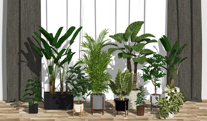 现代绿植盆栽 窗帘su模型(1)