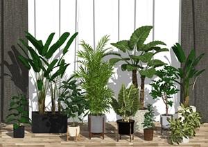 现代绿植盆栽 窗帘SU(草图大师)模型
