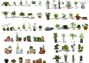现代盆栽 绿植 植物SU(草图大师)模型