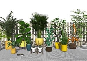 现代绿植盆栽 植物SU(草图大师)模型4