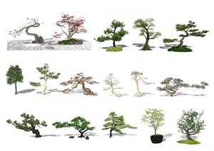 新中式景观树 景观小品 枯山石 石头SU(草图大师)模型2
