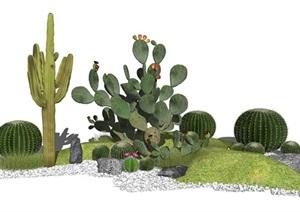 现代景观小品仙人掌景观仙人球SU(草图大师)模型