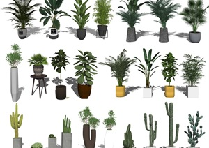 现代盆栽 绿植 植物SU(草图大师)模型3