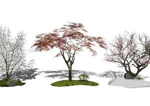 现代景观树 枯枝 树SU(草图大师)模型