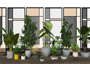 现代盆栽 隔断 植物 绿植屏风SU(草图大师)模型