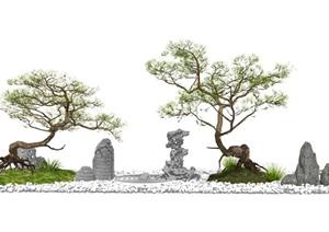 新中式景观小品枯山水松树景观树石头SU(草图大师)模型