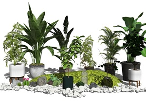 现代盆栽植物石头绿植SU(草图大师)模型