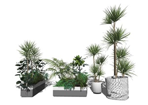 现代绿植盆栽 植物SU(草图大师)模型8
