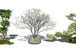 新中式景观小品 松树 景观树 SU(草图大师)模型