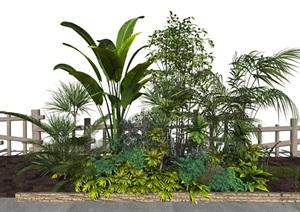 现代室外灌木 植物组合SU(草图大师)模型