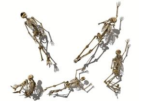 现代人体骷髅人体骨骼骷髅头骷髅雕塑SU(草图大师)模型